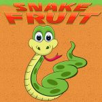 Snake Fruit