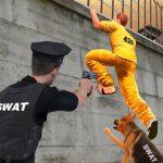 Prison Survive Break Escape